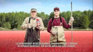 Pub France - Ocean Spray (2011)