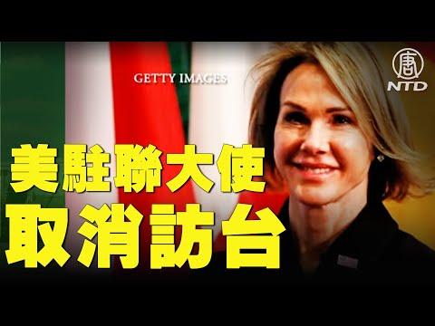美驻联大使取消访问 台吁两国关系强化