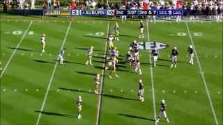 Cam Newton vs lsu