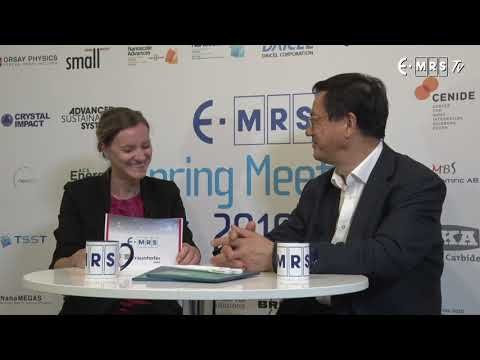 Zhong Lin WANG - E-MRS 2019 SPRING MEETING