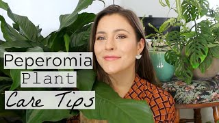 Peperomia Plant Care Tips & Tricks | Peperomia Houseplant Care!
