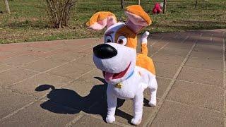 """Макс из """"Тайная жизнь домашних животных"""" / Secret life of pets Max toy"""