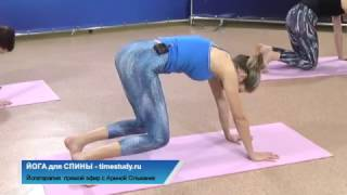 ЙОГА - упражнения для спины - скручивания! Прямой эфир на timestudy.ru с Ариной Ольваник!