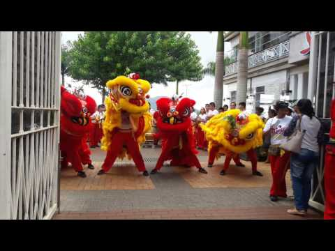 Chinese new year 2017 - At Bagatelle, Mauritius