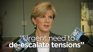 Aus. Foreign Minister Julie Bishop on MH17