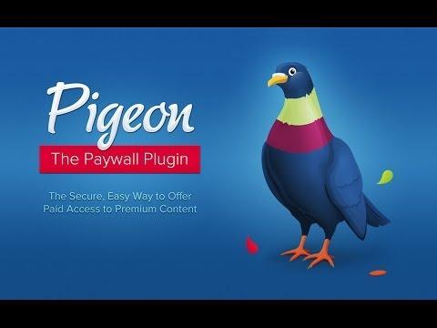 Pigeon Paywall Plugin