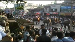 Adoor Pooram 2013