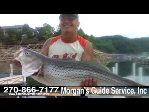 Morgan's Guide Service | Year-round Trophy Striper Fishing On Lake Cumberland | Russell Springs, KY