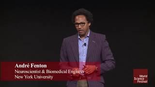 Cool Jobs: The Neuroscientist thumbnail