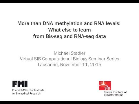 Michael Stadler: More than DNA methylation and RNA levels