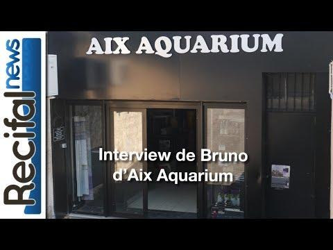 Visite d'Aix Aquarium & Interview de Bruno