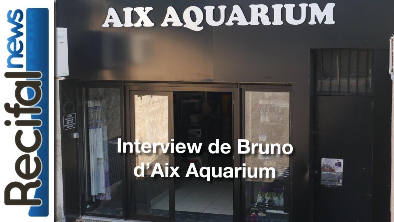 Visite d\'Aix Aquarium & Interview de Bruno - YouTube