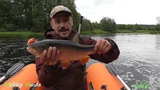 Новые правила рыболовства или сколько я поймаю рыбы за день? День на реке со спиннингом.