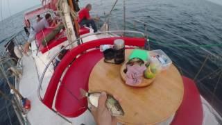 Ловля морского карася в Черном море