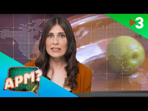 APM EL MUNDO TODAY 36