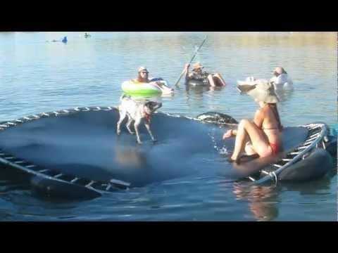 Dog does backflips on a floating trampoline