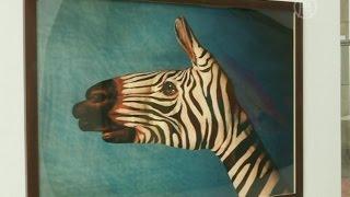 Художник рисует на руках исчезающих животных (новости)