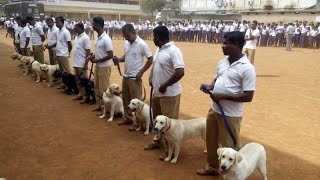 Dog Squad of kerala police.Dog Squad. Dog Training Classes.How to Train Your Dog