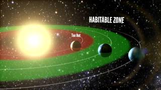 20% of Stars in the Universe Contain Habitable Planets