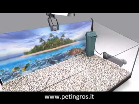 Tetra repto aquaset tartarughiera youtube for Tartarughiera
