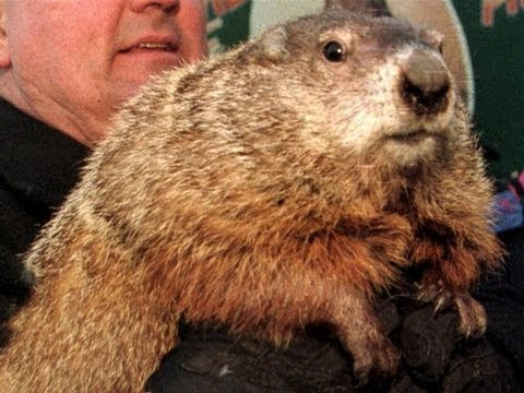 groundhogs-day-film-(woodstock,-il)