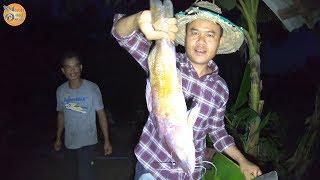 เมนูนี้พลาดไม่ได้ ปลากดเหลืองตัวใหญ่ๆ ลาบหนังกึบๆ แกงปลากดใส่หน่อไม้ดอง