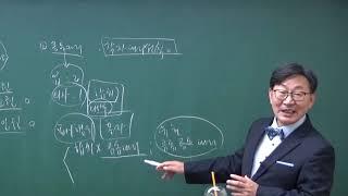 [민사법 산책] 04. 민법 법정대리권 15분 만에 완…