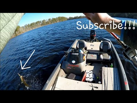 Wintertime Jerkbait Tips And Tricks (Cold, Windy Day Of Winter Bass Fishing)