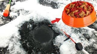 Лучшая прикормка для рыбалки зимой! Пробуй наловишь много!