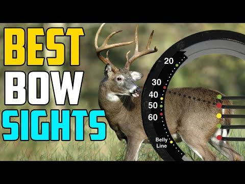 Best Bow Sights 2020 - Top 3 Best Bow Sight For Beginners