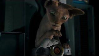 Фильм Кошки против собак: Месть Китти Галор за минуту