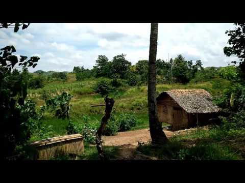 Simple Life: Farm Village in Bohol, Philippines