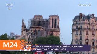 Смотреть видео Пожар в соборе Парижской Богоматери до сих пор не потушен - Москва 24 онлайн