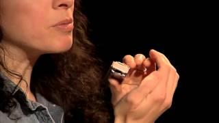 Harmonica Lessons - #4 Holding  - Blues Harmonica Blueprint - Annie Raines