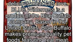 Blue Buffalo Wilderness Rocky Mountain Recipe High Protein Grain Free, Natural Adult Dry Cat Food,