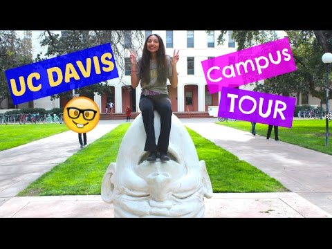 UC Davis Campus Tour! Sports and Recreation || The Truth about UC Davis Series
