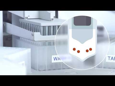 Automated Immunoprecipitation In 40 Min Using Dynabeads And KingFisher Flex
