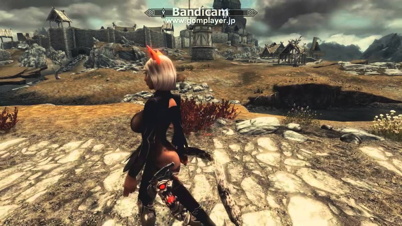 HDT Tails Wearable at Skyrim Nexus - mods and community