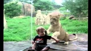 Дети в зоопарке   Смешные моменты! 2015 Children at the zoo Funny moments 2015 (часть1)