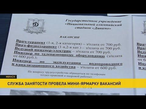 Ярмарка вакансий в Минске: стадиону «Динамо» необходимо 270 сотрудников