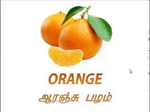 Learn Fruits Name In English & Tamil