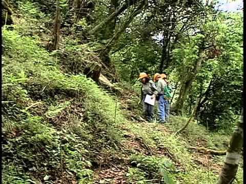 生態保育影片合輯 瑞岩溪野生動物重要棲息環境四季之美