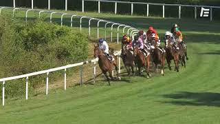 Vidéo de la course PMU PRIX DU GABARDAN