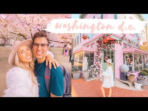 WASHINGTON D.C. TRAVEL DIARY! ✨