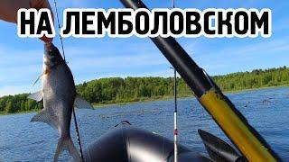 Рыбалочка на Лемболовском озере