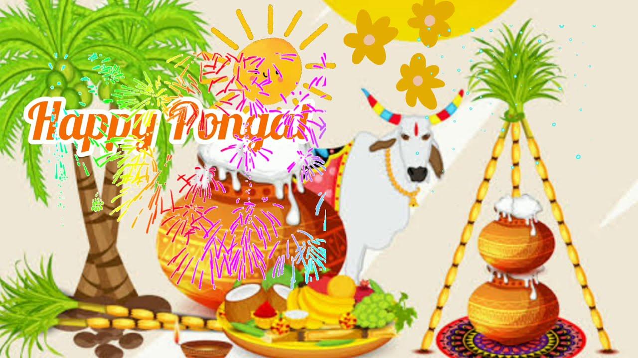 Happy Pongal Status|| Pongal Status for WhatsApp || Pongal wishes