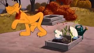 Mickey mouse Trop Dr le   Pluto joue   la main chaude   fran ais