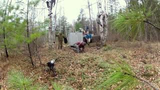 Réaction du tigre de Sibérie à voir