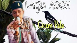 Lagu Aceh Cicem Pala    Cover Tgk Firdaus