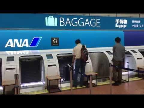 All Nippon Airways Robot Staff Tokyo